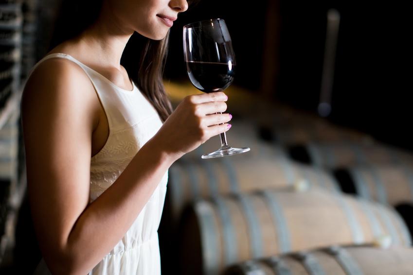 Pourquoi climatiser une cave à vin ?